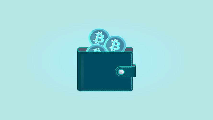Jasa Pembuatan Website Wallet Cryptocurrency